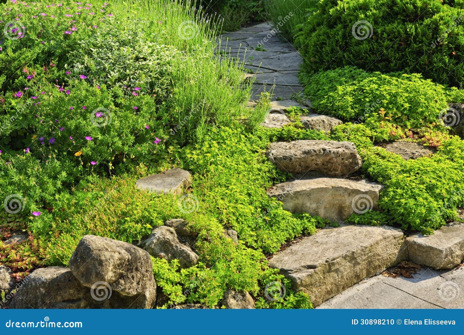 Chemin de jardin avec l 39 am nagement en pierre photo stock - Amenagement de jardin avec des pierres ...