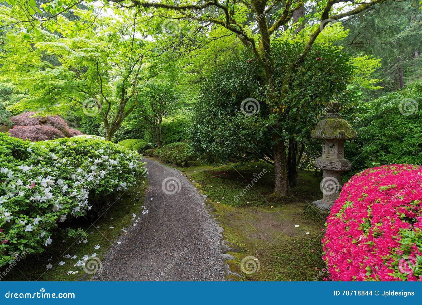 Chemin De Jardin Avec La Lanterne Et Les Azalees En Pierre