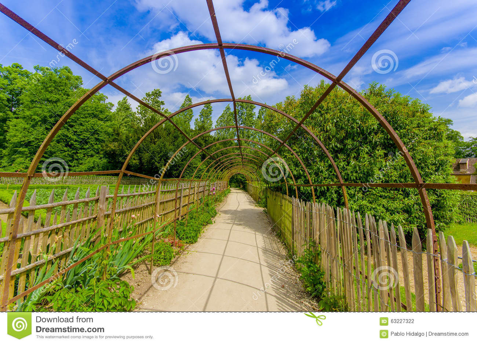 chemin de marche dans des jardins de versailles frances photo stock image 63227322. Black Bedroom Furniture Sets. Home Design Ideas