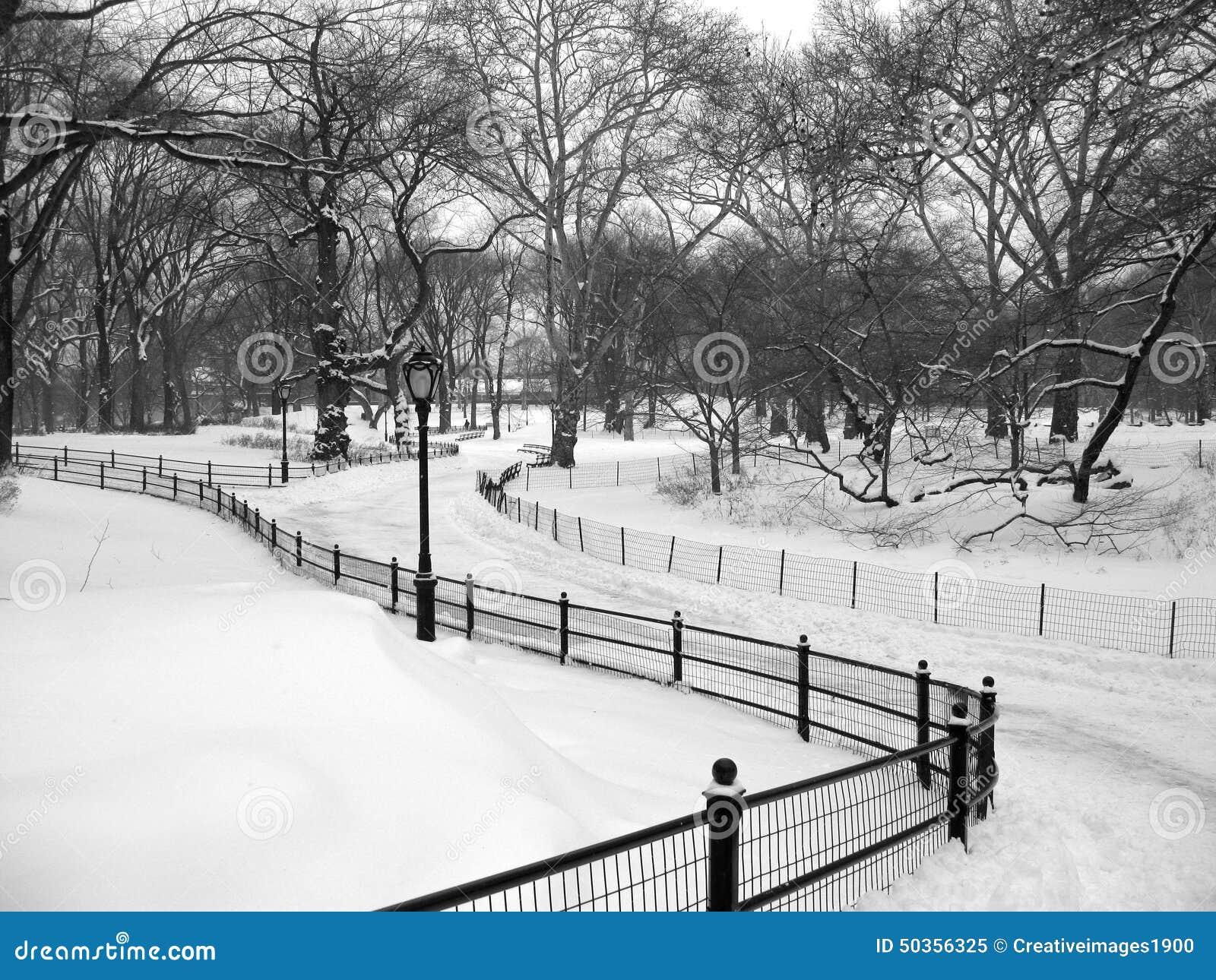 Chemin de Milou dans le Central Park, New York City