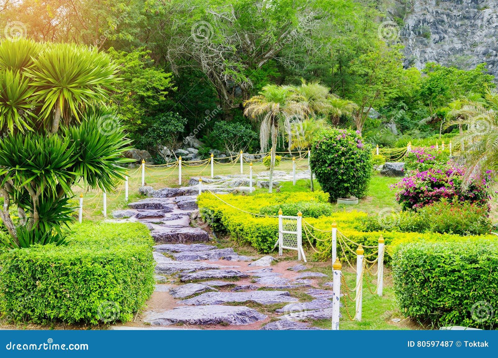 Chemin de passage couvert dans le jardin vert de pelouse for Conception de jardin dans le paysage