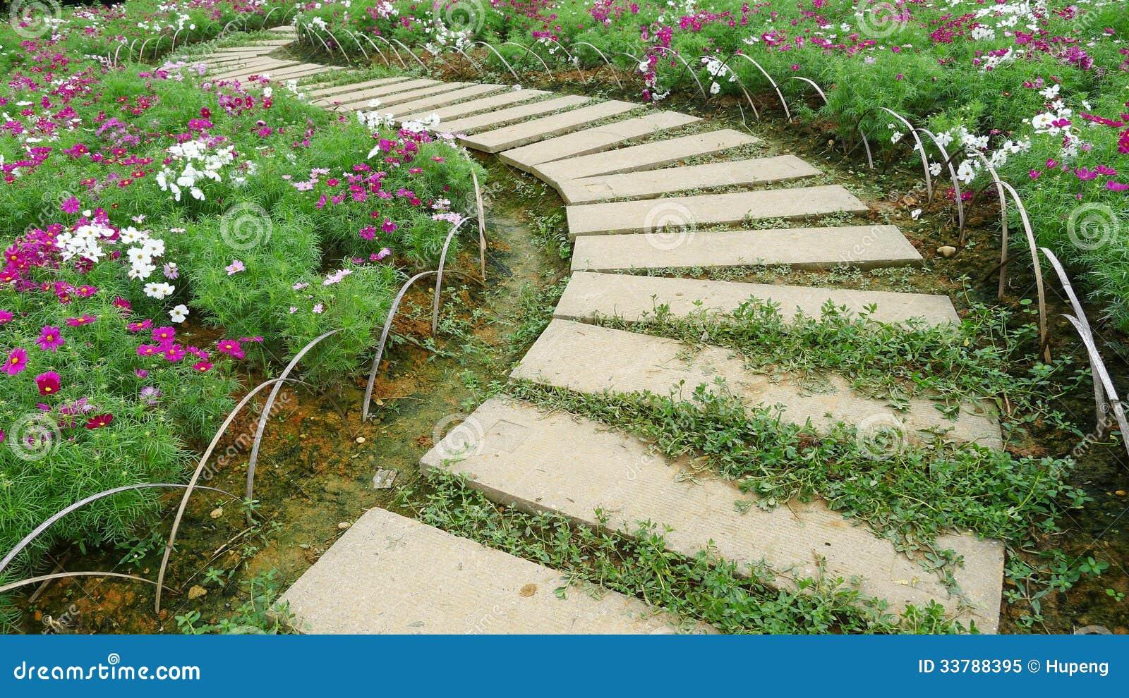 chemin en pierre avec des fleurs image stock image 33788395. Black Bedroom Furniture Sets. Home Design Ideas