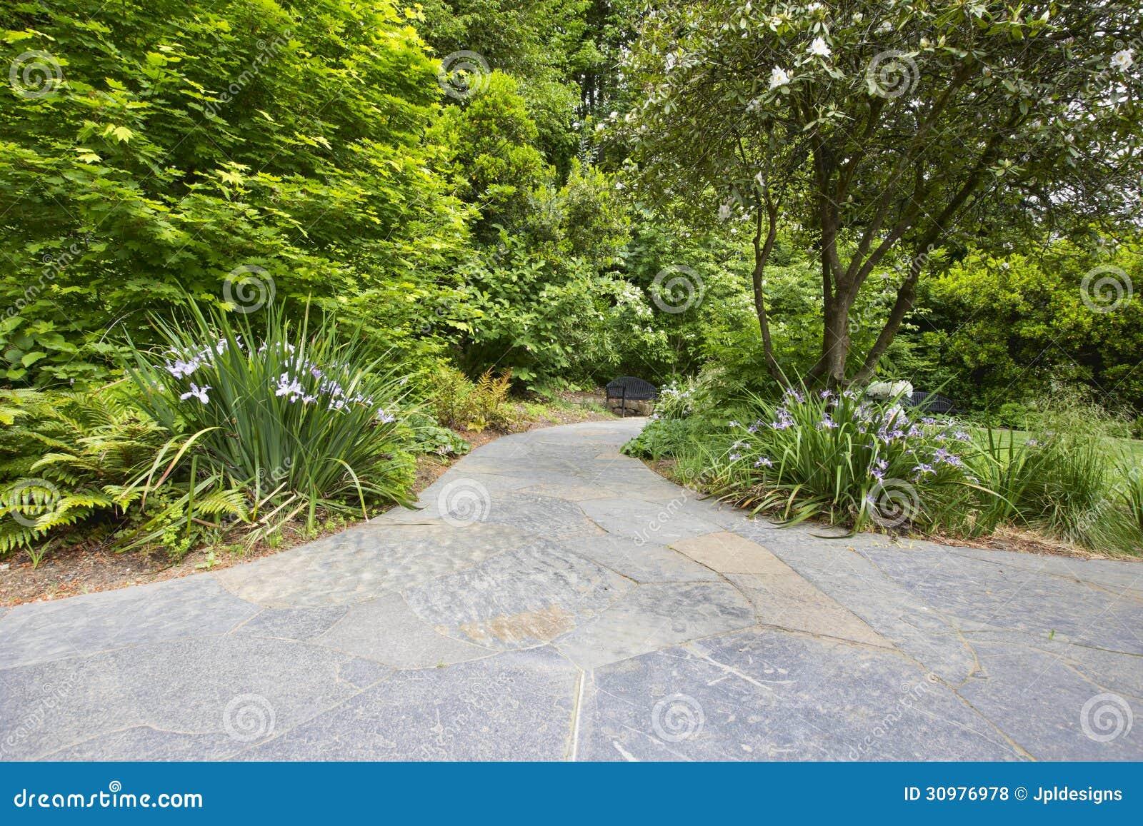 chemin en pierre de jardin d 39 ardoise avec des usines photos libres de droits image 30976978. Black Bedroom Furniture Sets. Home Design Ideas
