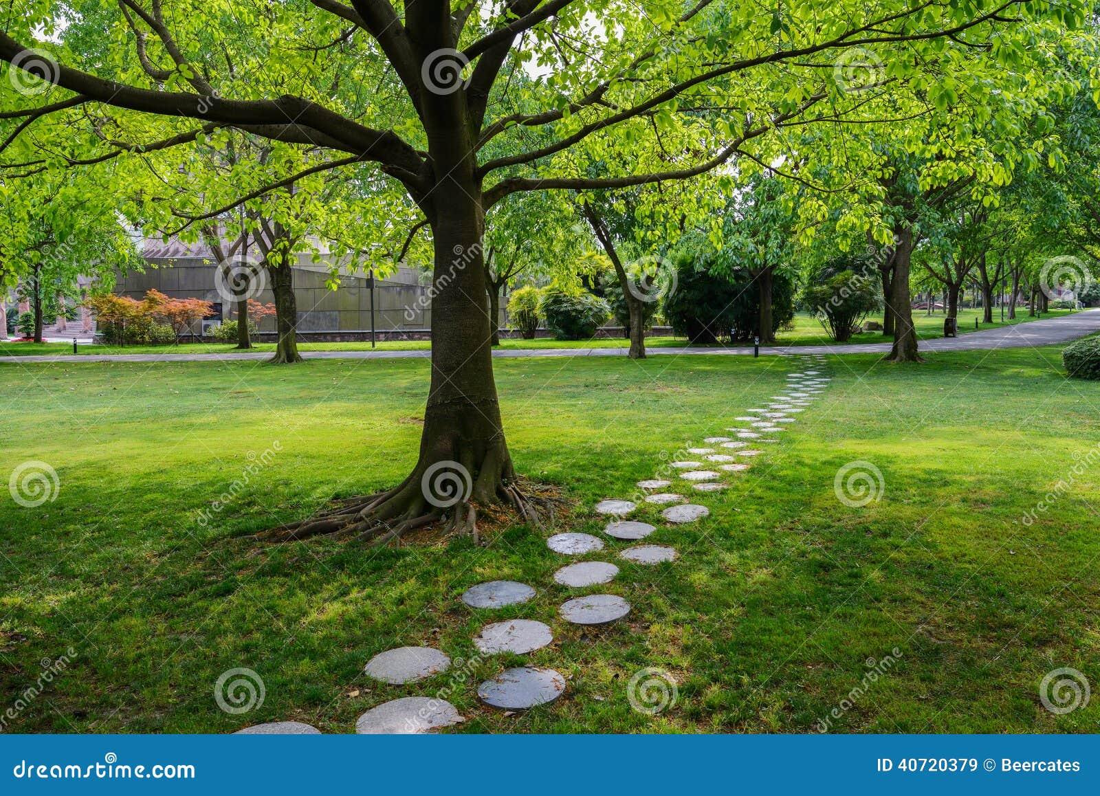 chemin en pierre rond l 39 ombre de l 39 arbre photo stock image 40720379. Black Bedroom Furniture Sets. Home Design Ideas