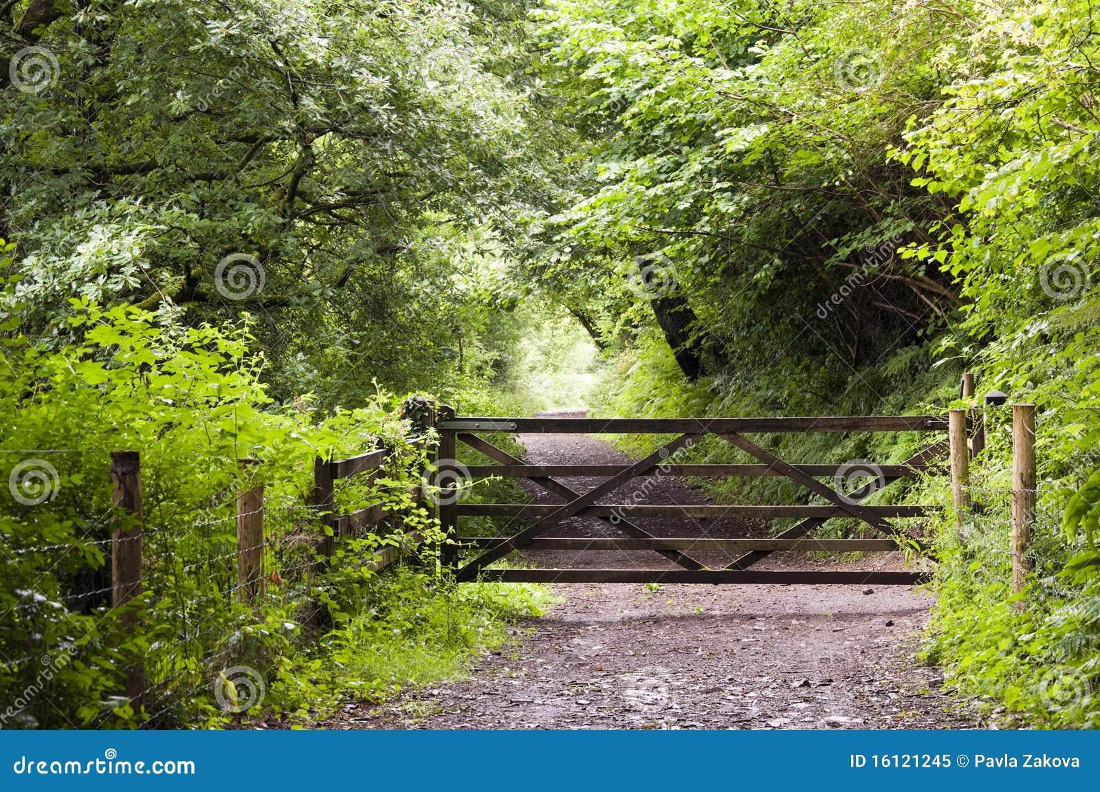 Chemin forestier avec la porte