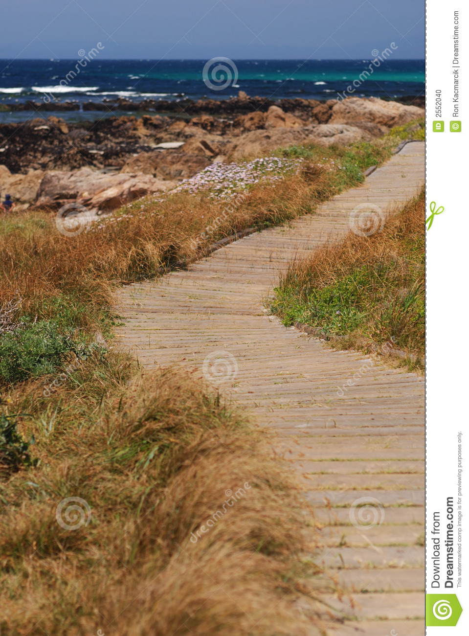 Chemin le long du rivage