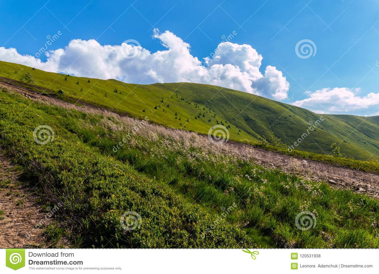 Chemin sur la pente verte de la montagne sous un ciel bleu lumineux avec des nuages