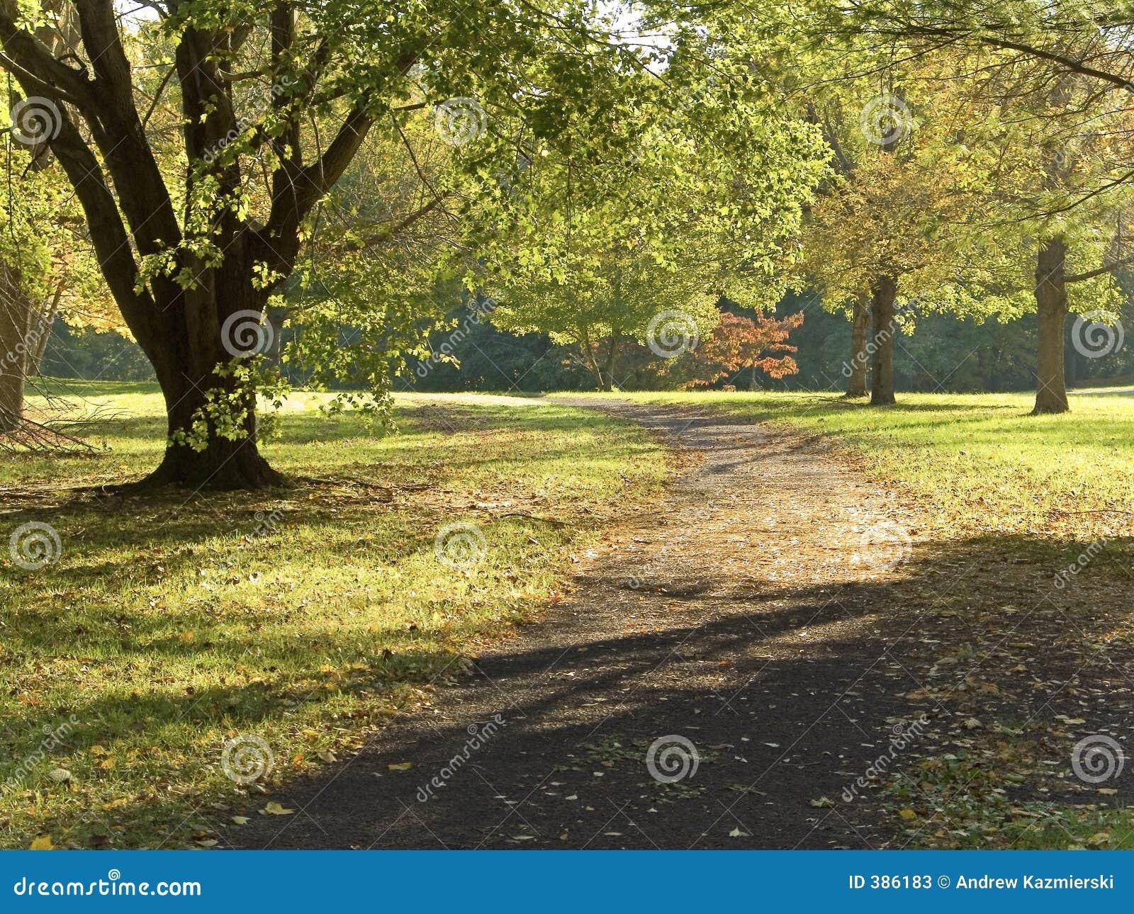 Chemin tôt d automne