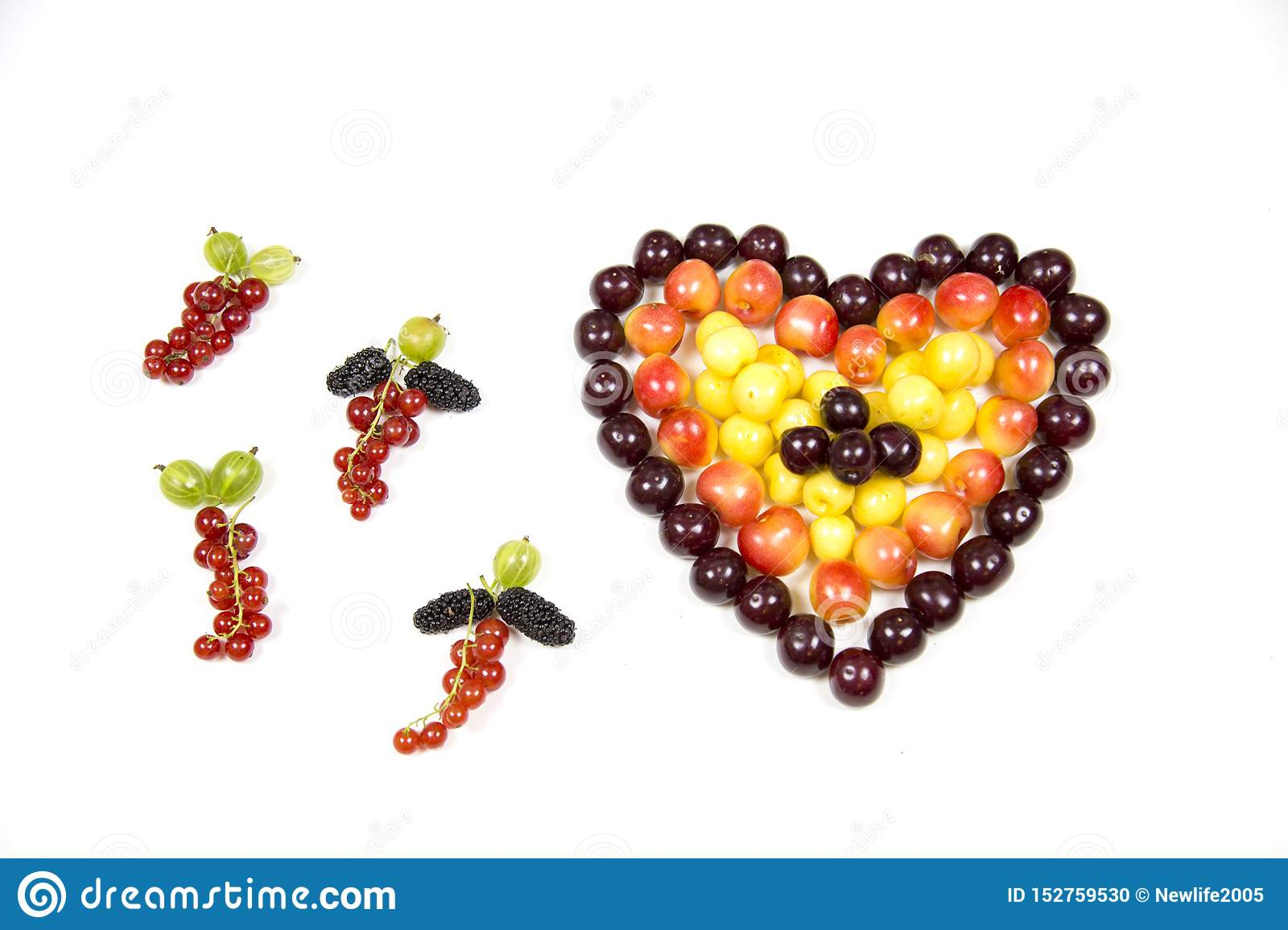 Cherry berries cherries in the form of a heart of red pink yellow and tassels of red currant gooseberry mulberry isolated on a whi
