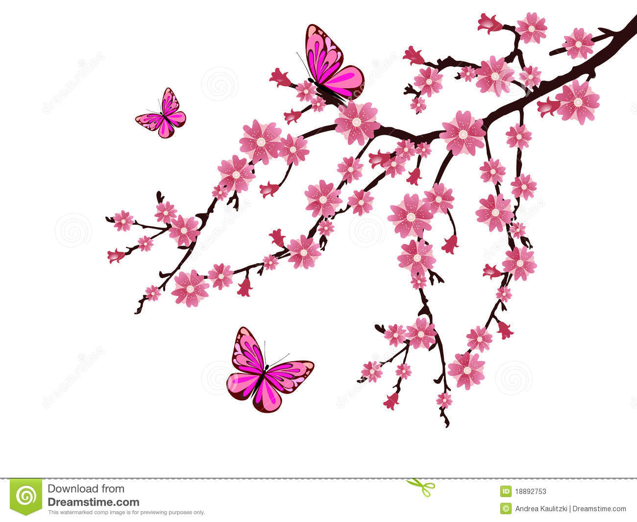 Cherry Blossom Stock Photos - Image: 18892753