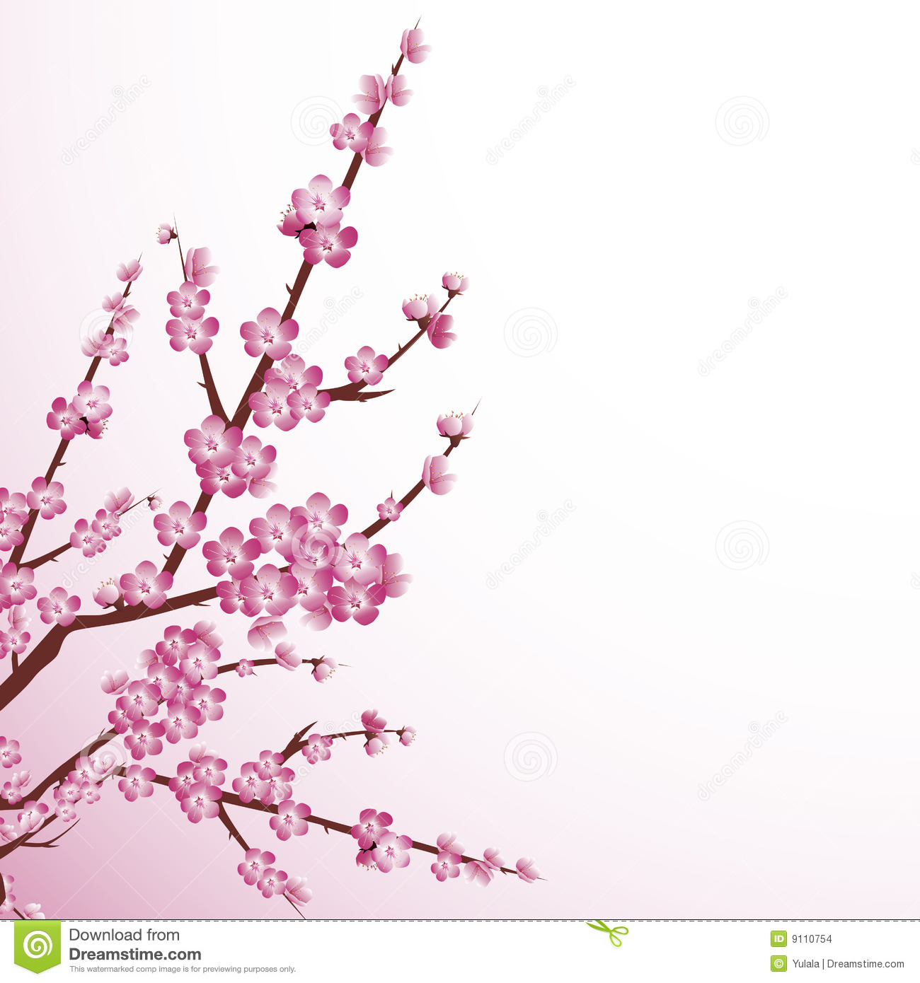 Cherry Blossom Stock Images - Image: 9110754
