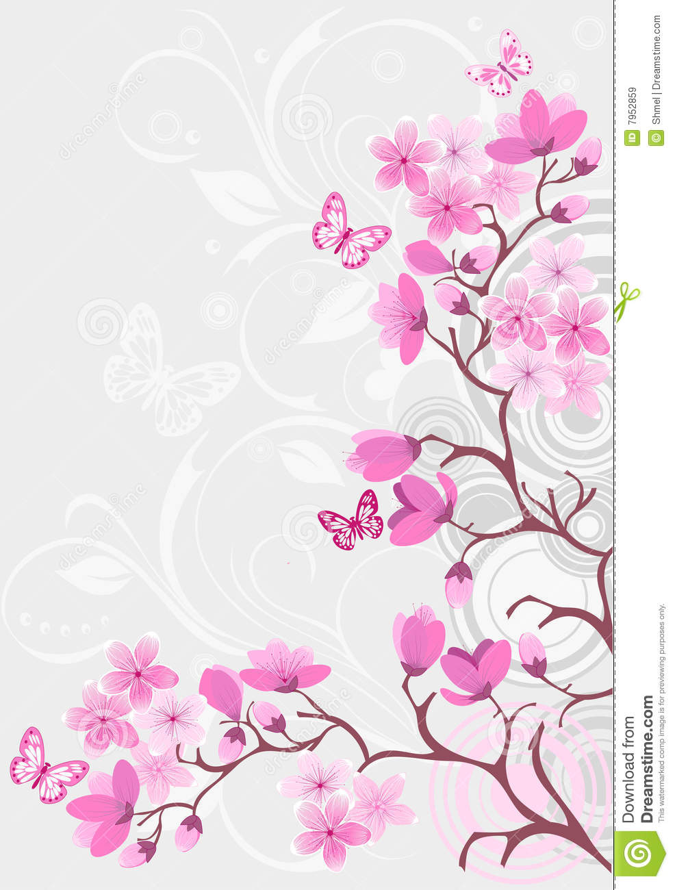 Cherry Blossom Background Royalty Free Stock Images - Image: 7952859