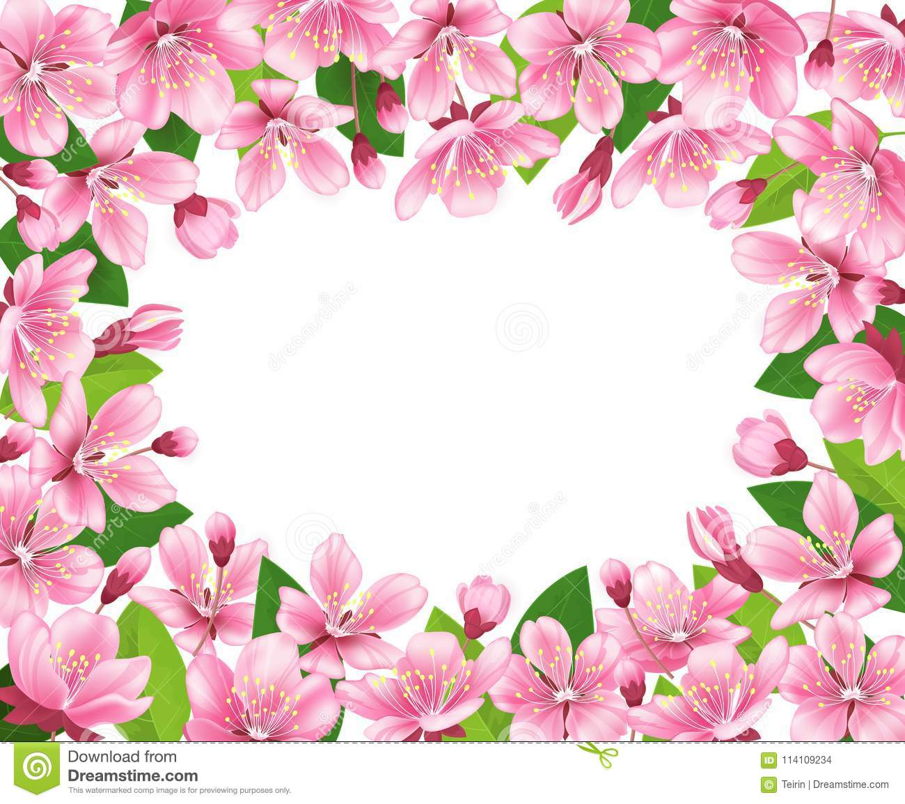 Cherry Blossom Background Pink Spring Flowers Frame Cartoon Style