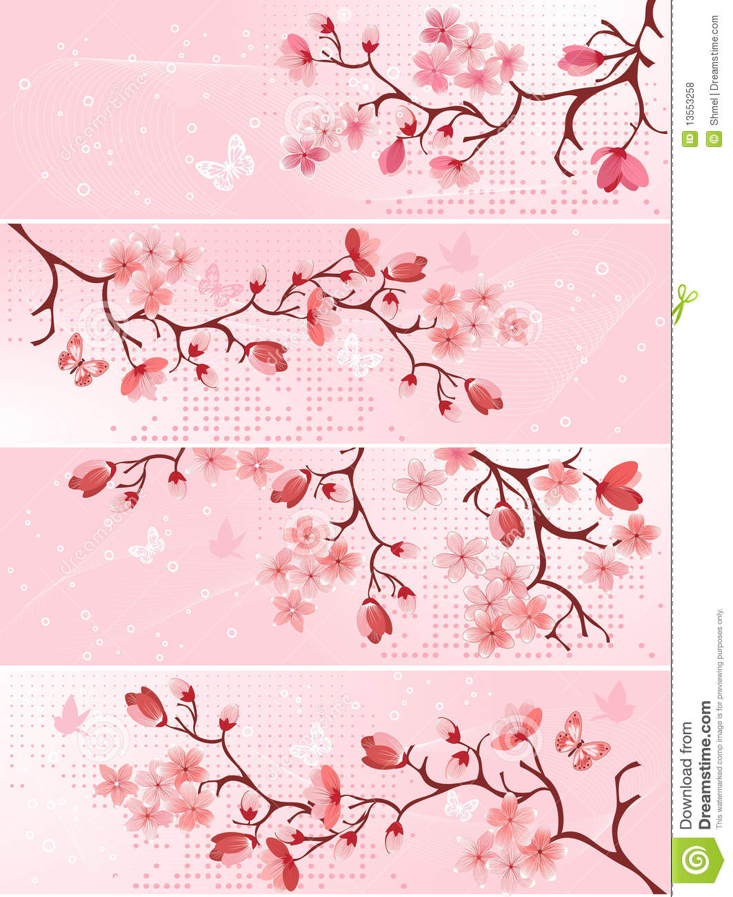 Cherry Blossom Banner Stock Vector Illustration Of