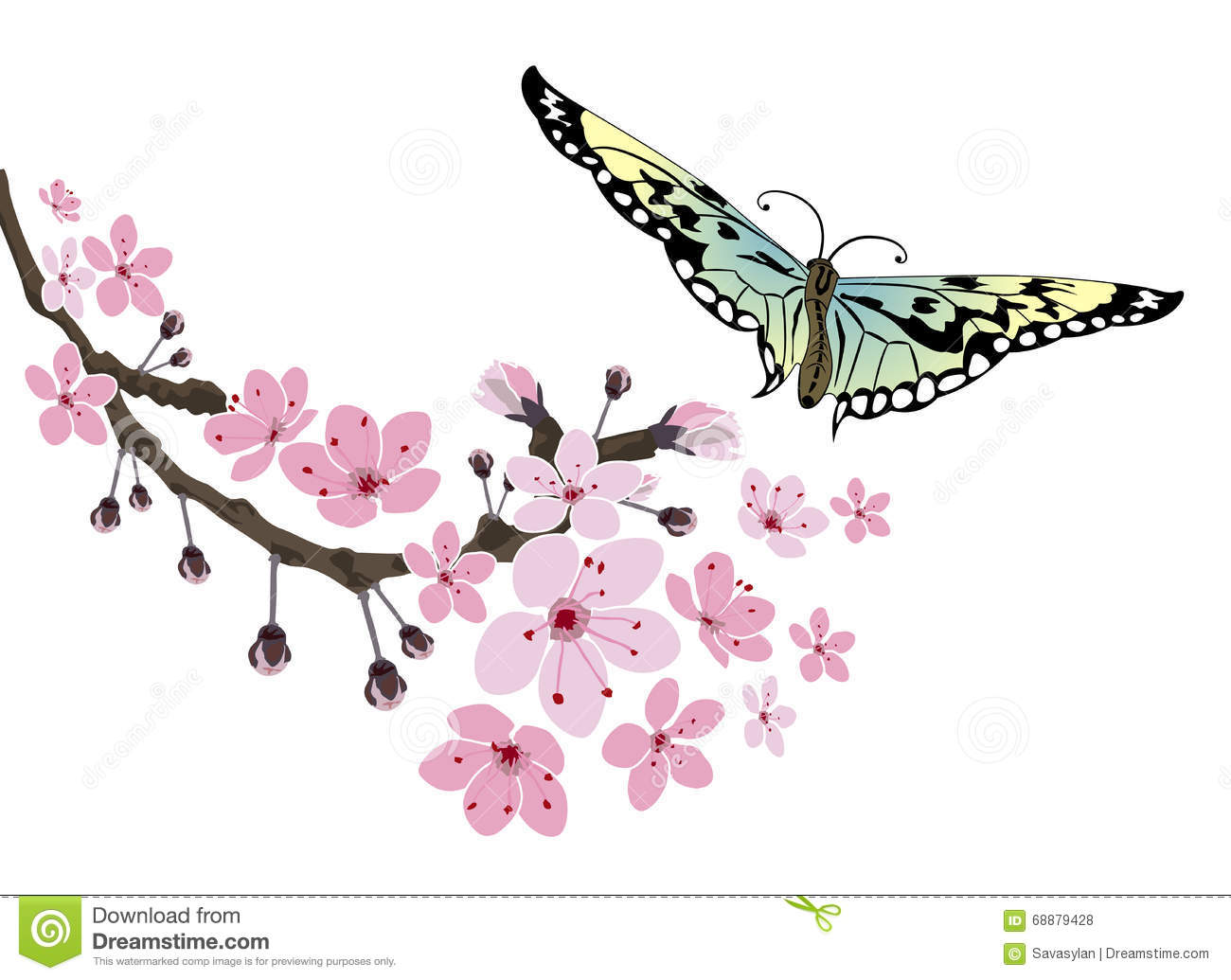 4ff43f4fa Cherry Blossom And Butterfly Stock Vector - Illustration of chinese ...