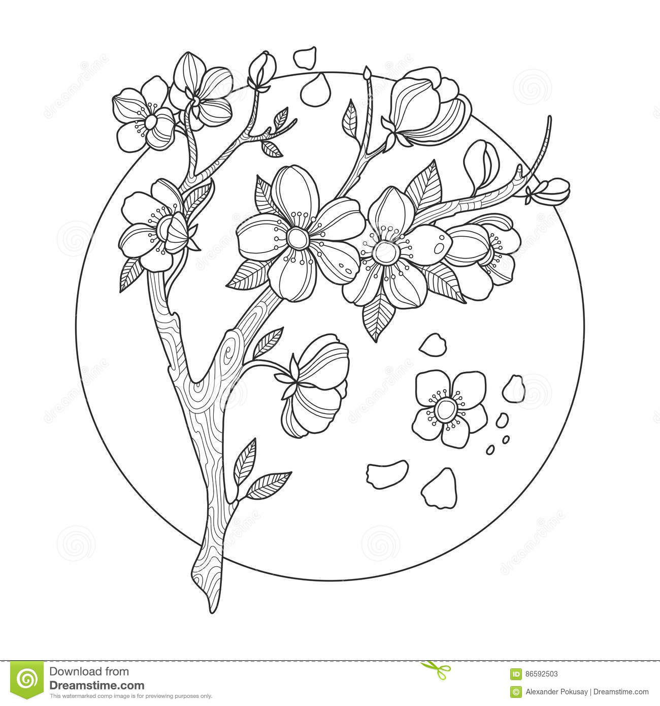 Cherry blossom coloring pictures coloring pages for Cherry blossom tree coloring page