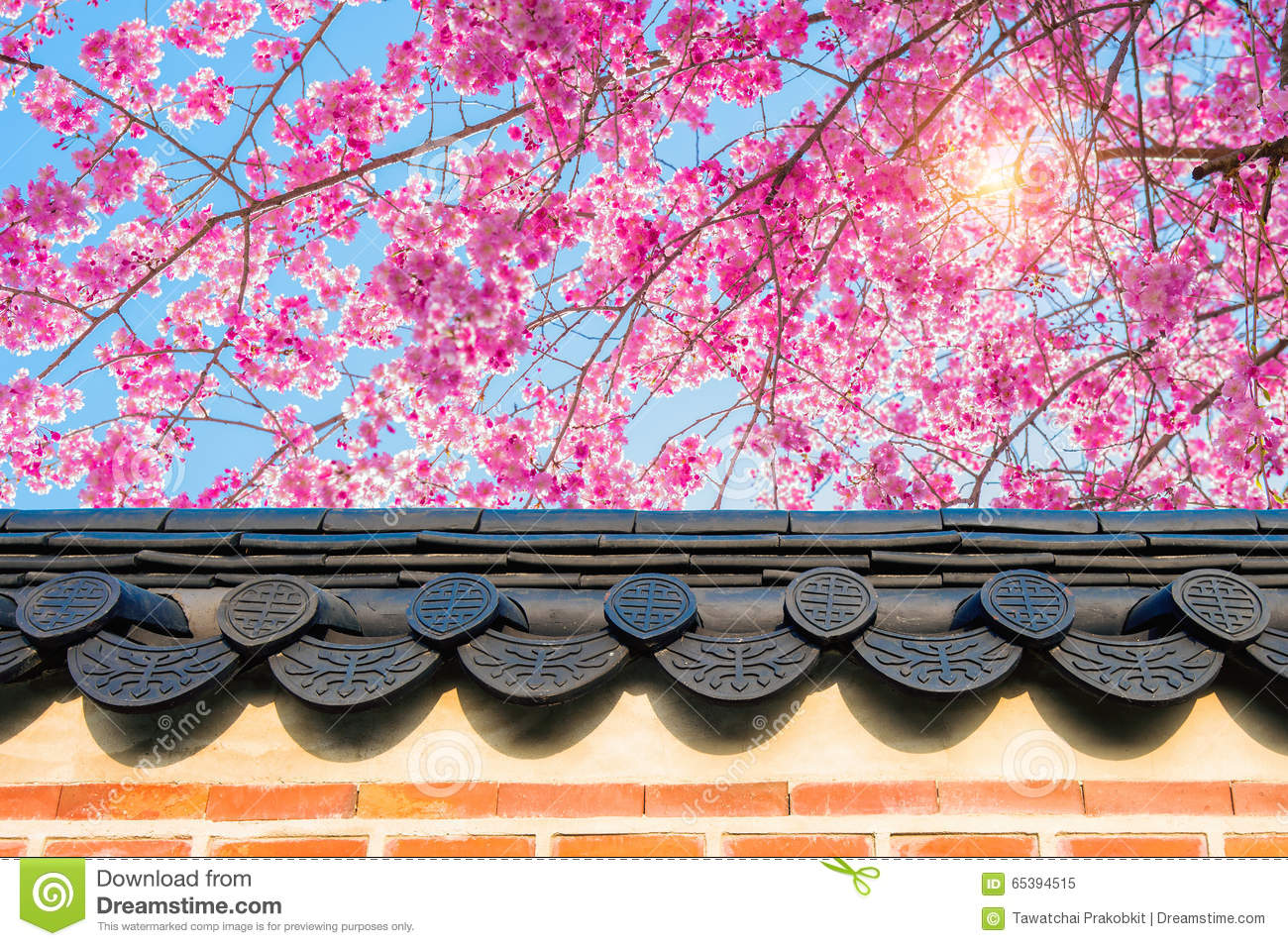 Nature background with blossoming sakura branch royalty free stock - Cherry Blossom With Roof Of Temple In Spring Stock Photo