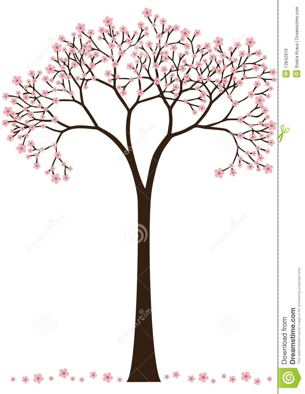 Cherry Blossom Tree Stock Vector Illustration Of Graphic 13642916