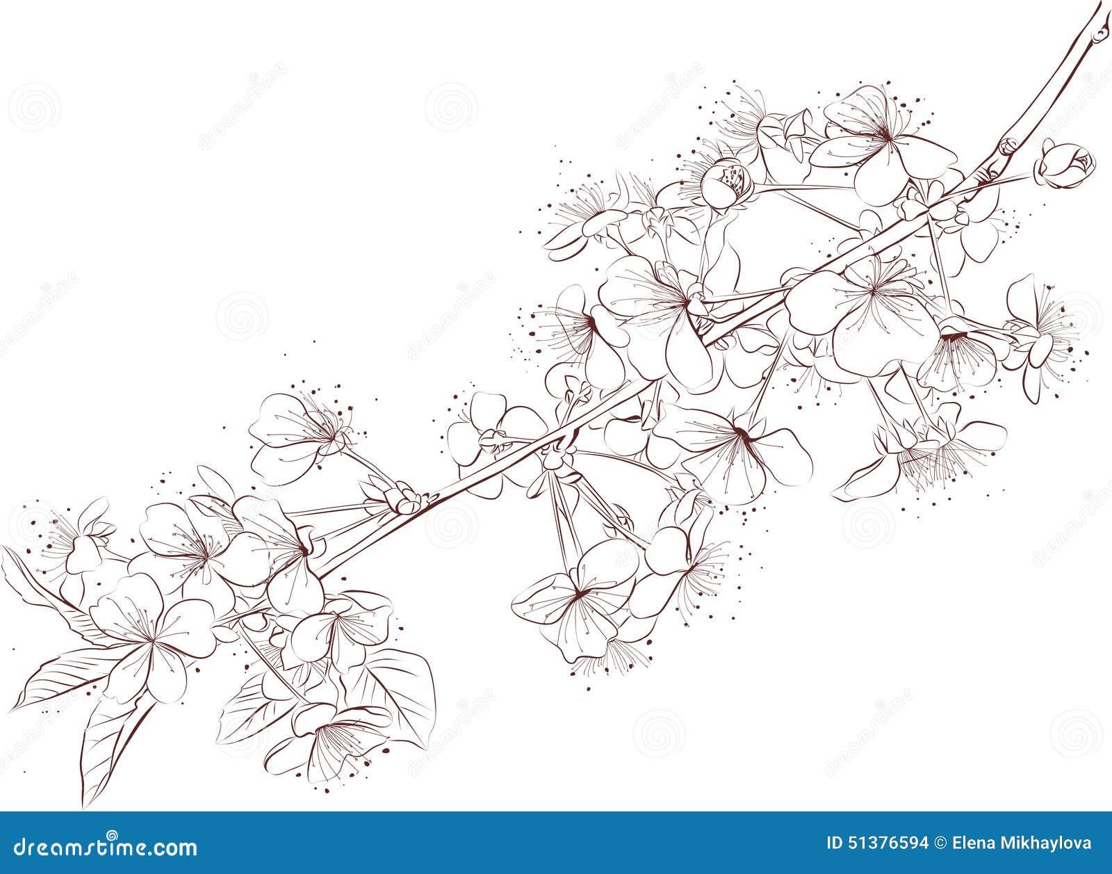 Cherry Branch Outline