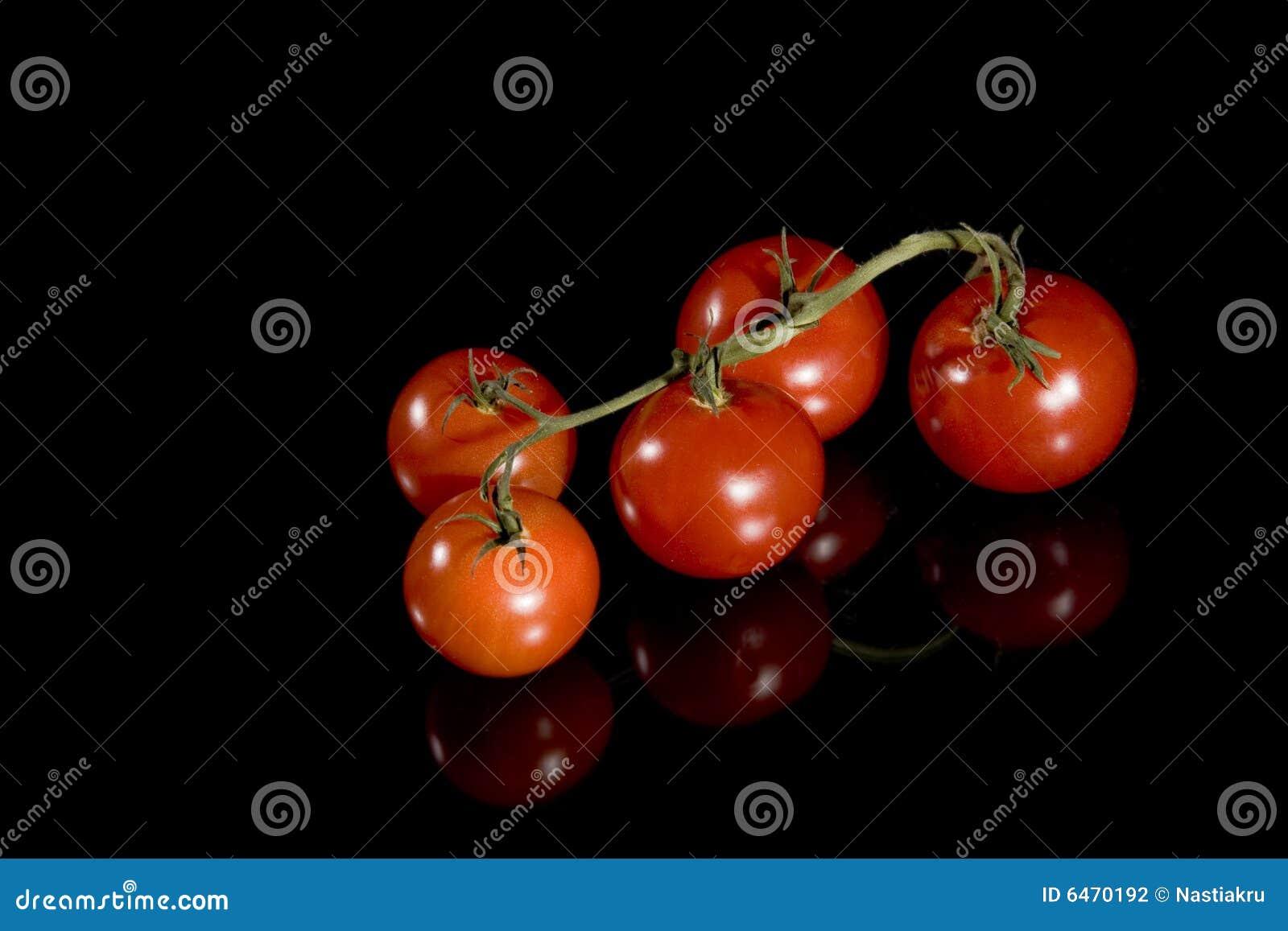Cherry odizolowane czarnej czerwone pomidorów