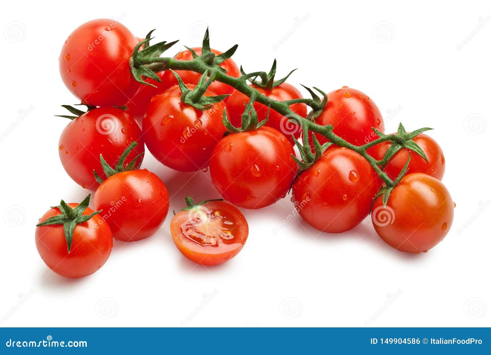 Cherry Tomato – 'Pomodoro Ciliegino 'en el fondo blanco