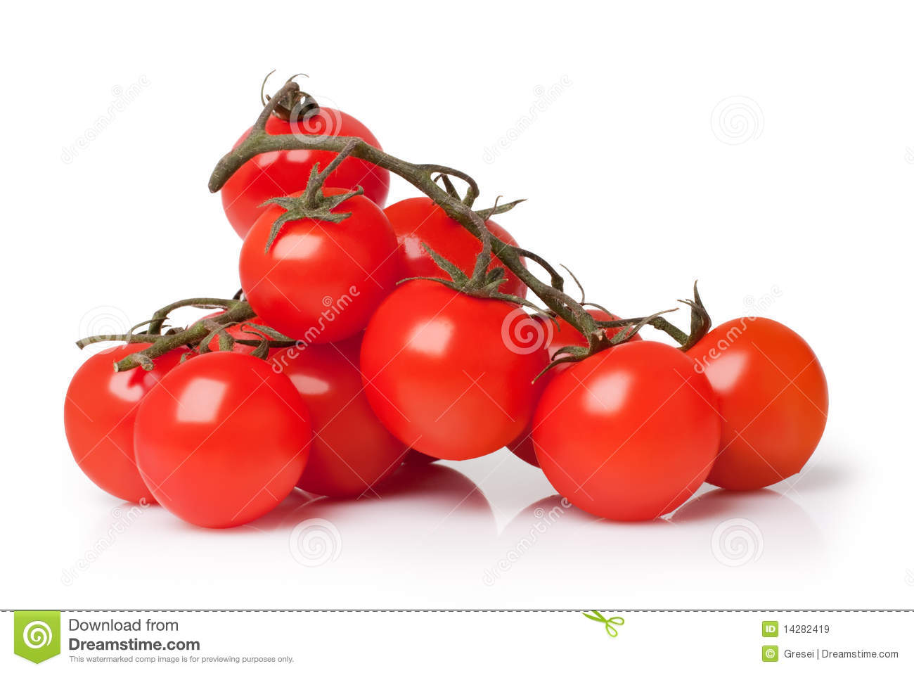 tomato business plan
