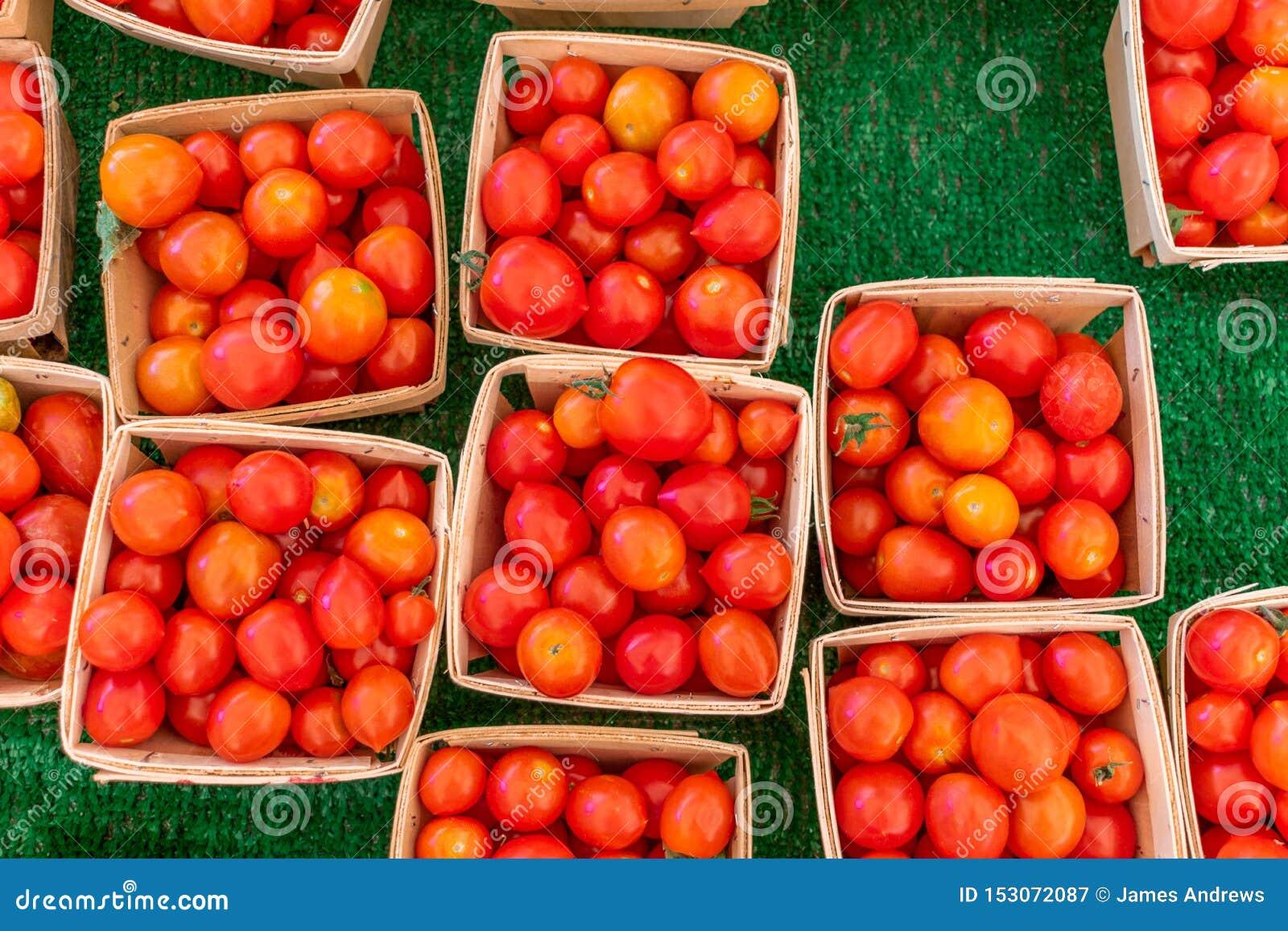 Cherry Tomatoes som är till salu på lokala bönder, marknadsför