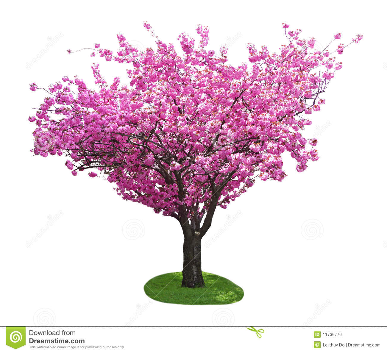 christian single women in cherry tree Symbolism of tree of life across different cultures, discovering a magical key to how life manifests itself, a complex formula of existence, the flow of creation from divine to earth and back to divine.