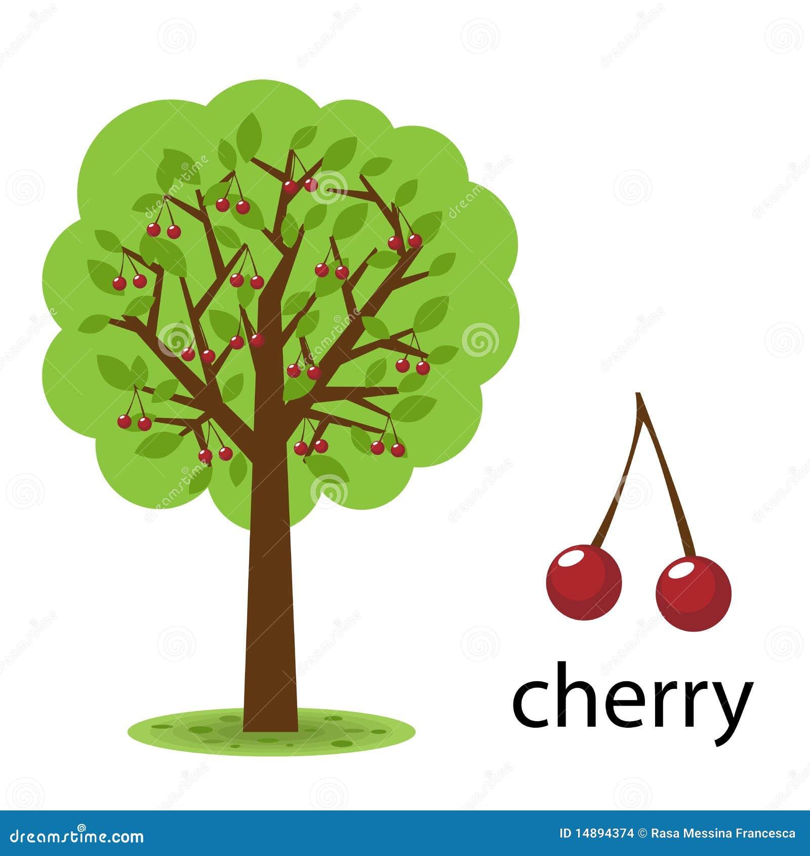 Cherry Stock Illustrations – 77,402 Cherry Stock Illustrations ...