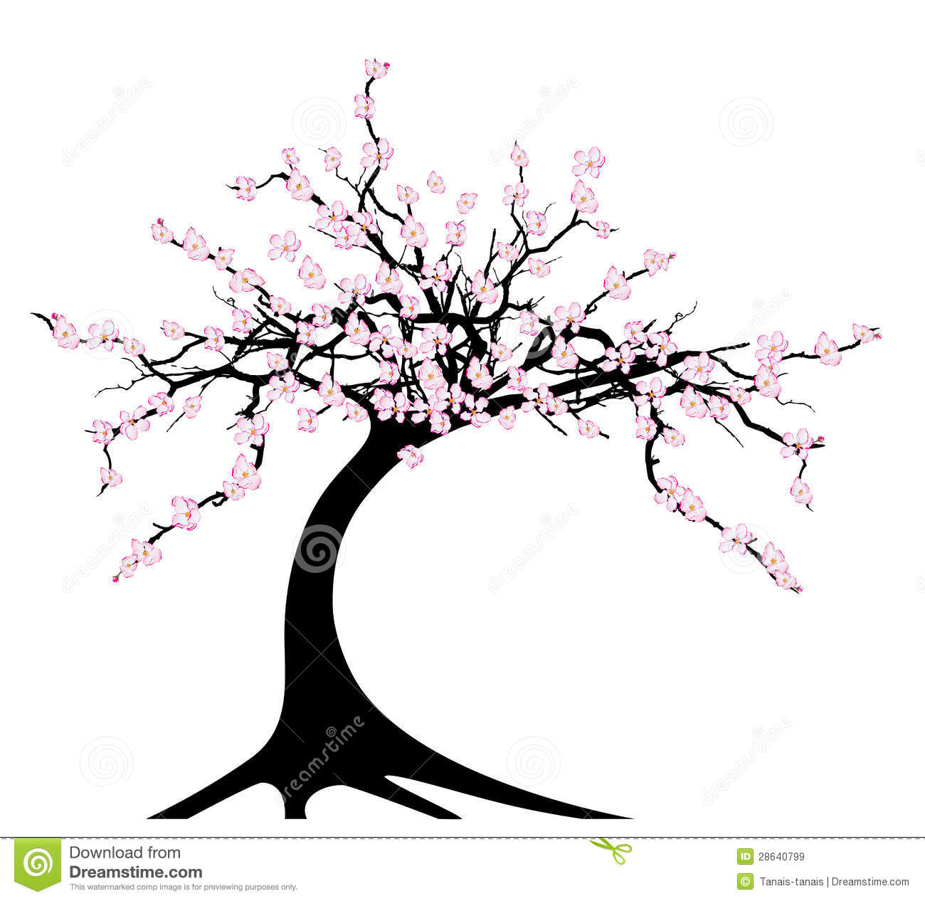 Cherry Tree Stock Vector Illustration Of Japanese Backgrounds