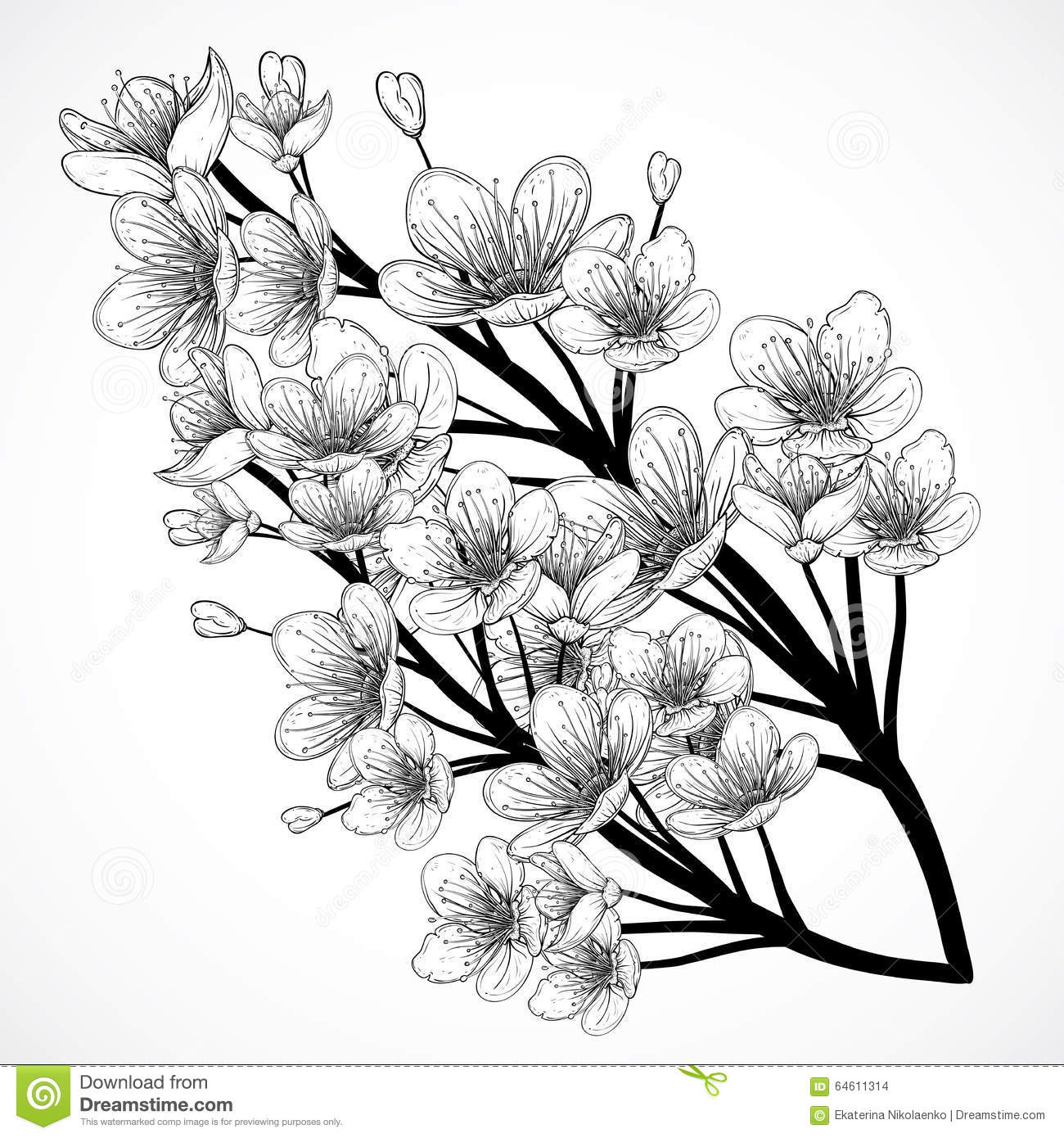 Uncategorized Cherry Blossom Tree Sketch cherry tree blossom vintage black and white hand drawn vector illustration in sketch style