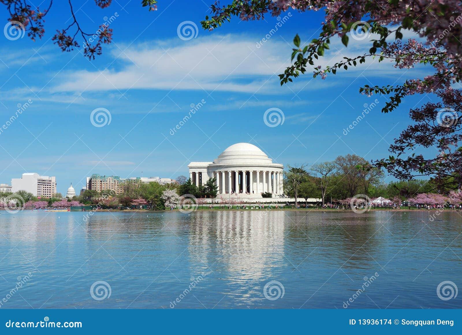 Cherryblomning i Washington DC