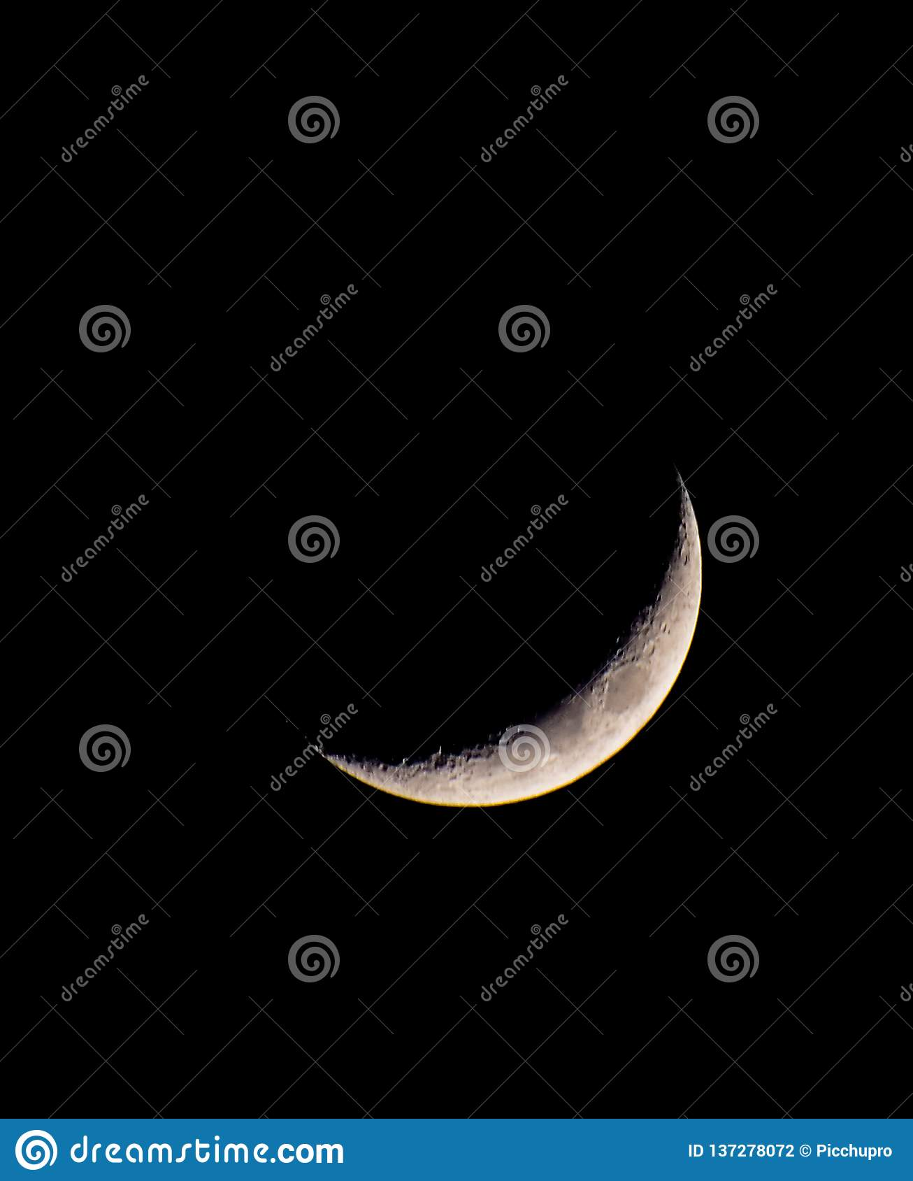 Cheshire Cat Smile Moon