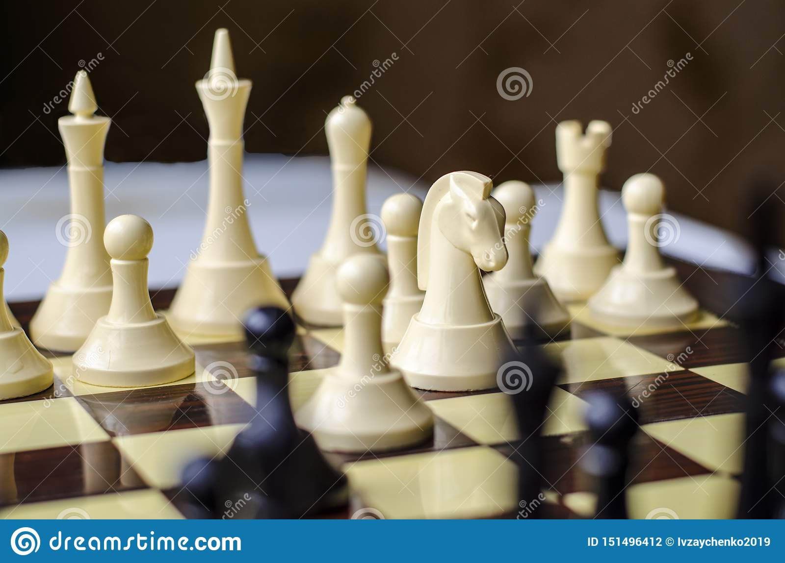 Chess game, horse is the piece in focus