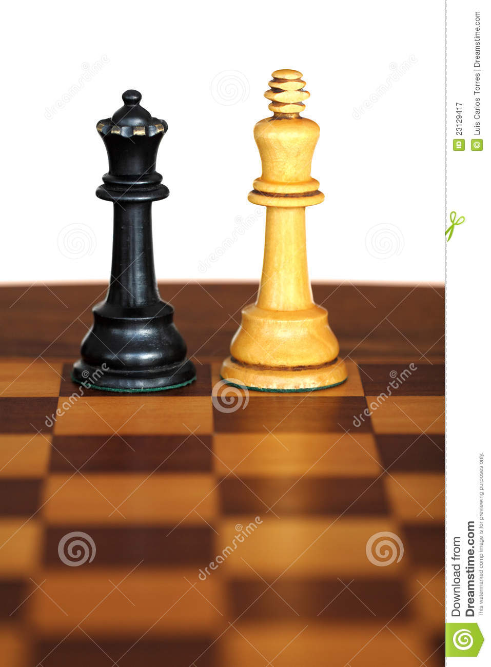 Chess pieces on white background.