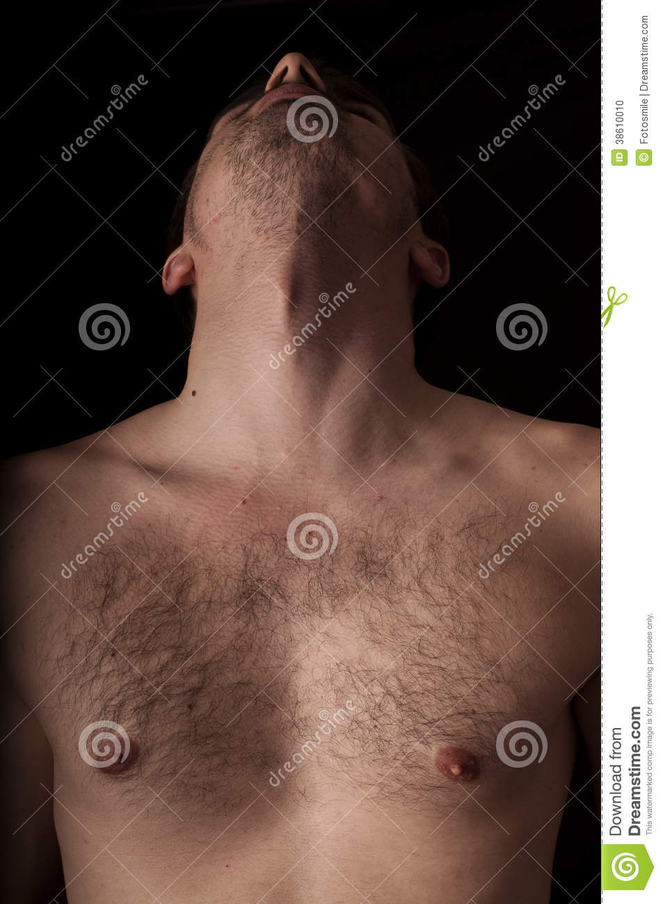 Chest and neck