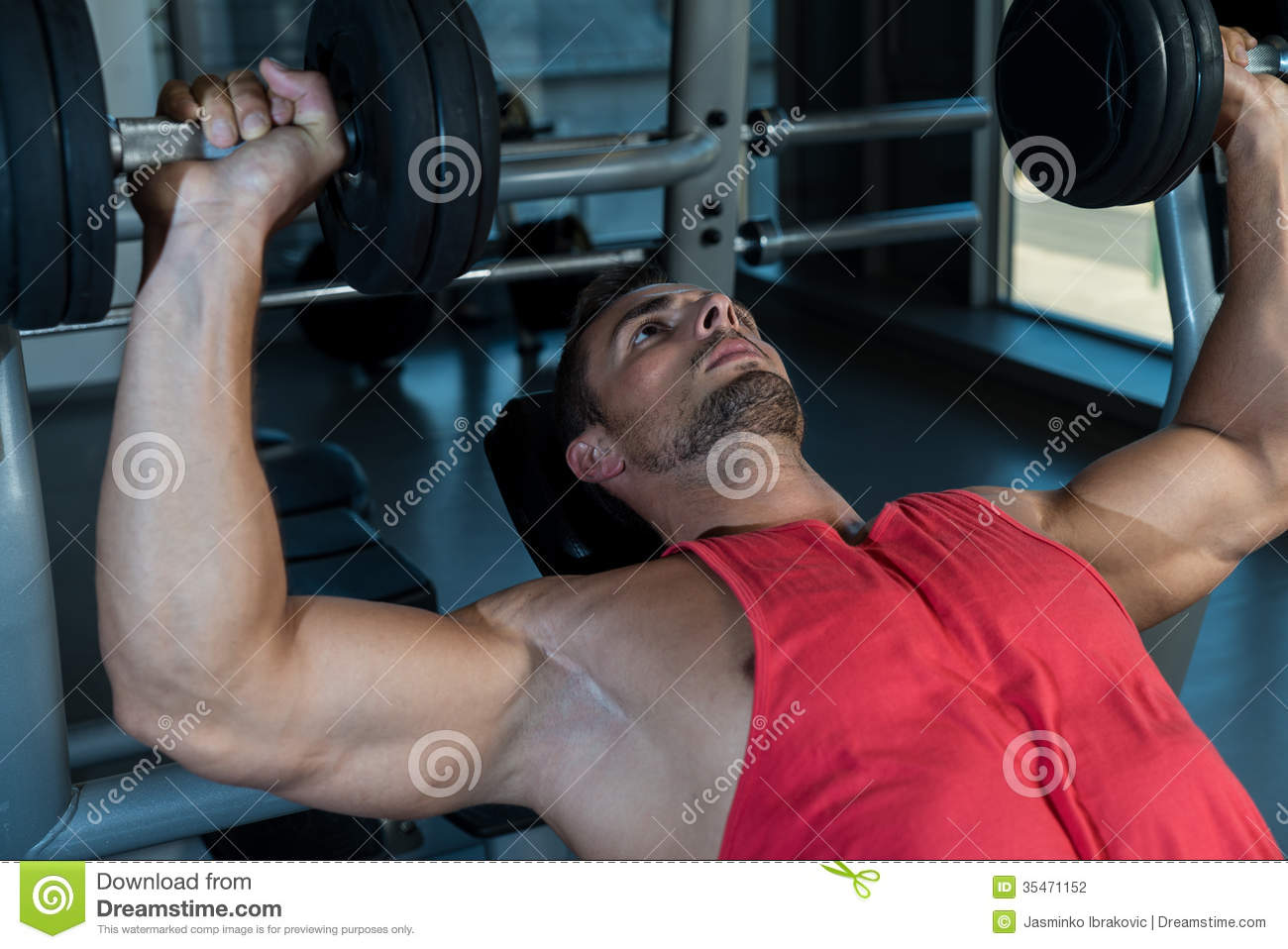 Chest Workout With Dumbbells Stock Photography - Image ...
