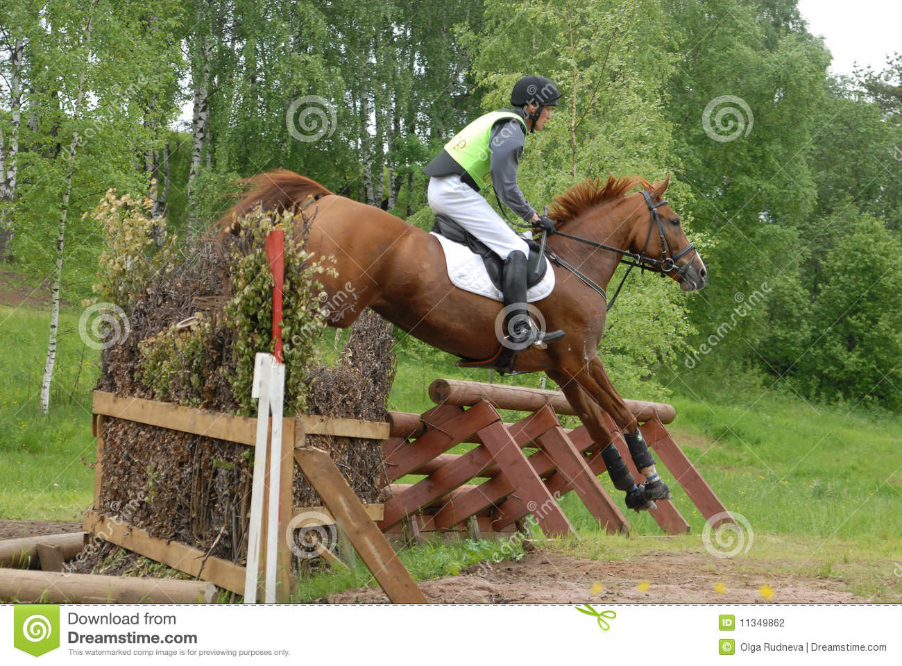 Chestnut Red Horse Jumping Editorial Photography Image Of Elegance 11349862