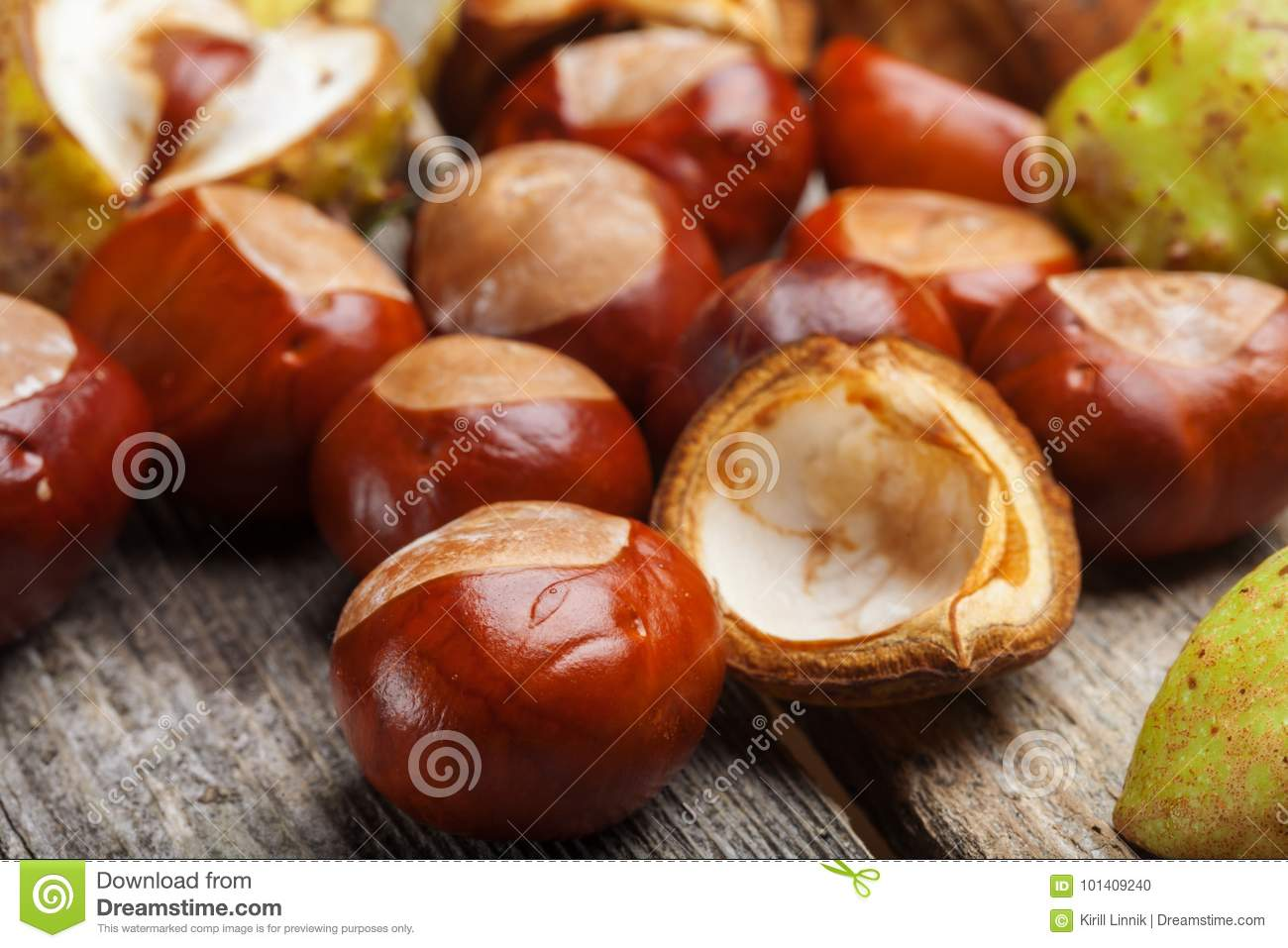 Download Chestnut on the table stock photo. Image of macro, background - 101409240