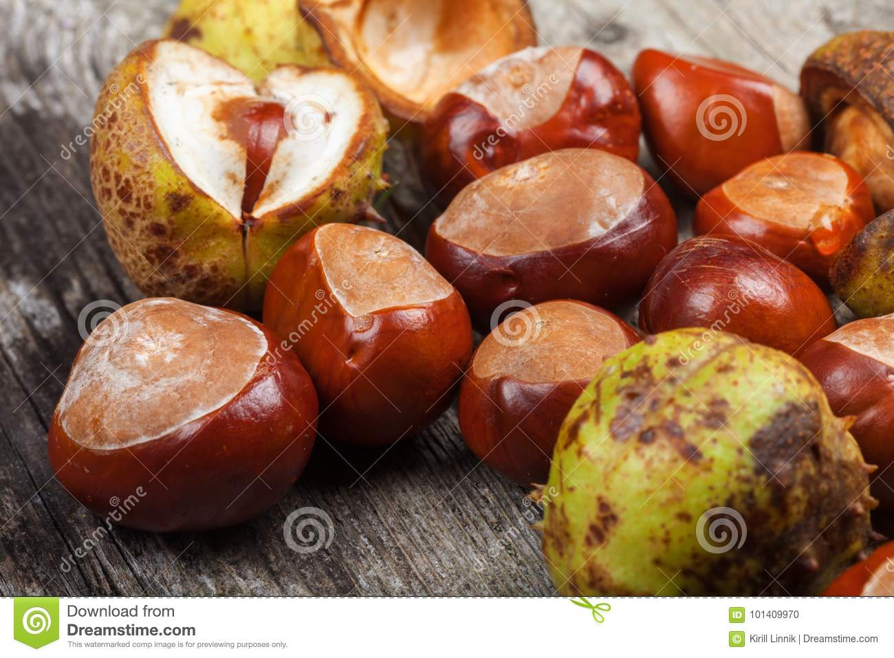 Download Chestnut on the table stock photo. Image of natural - 101409970