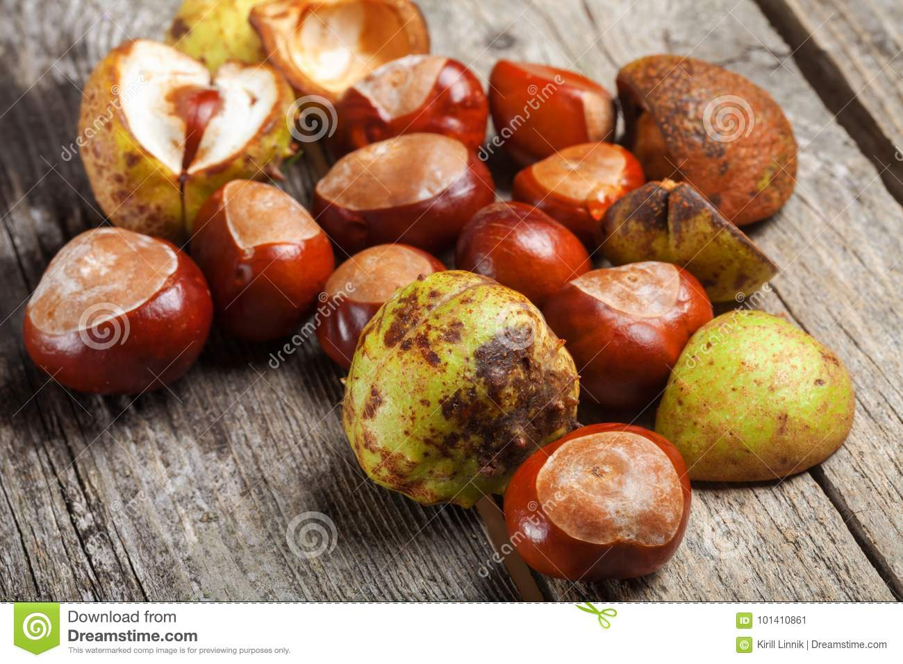 Download Chestnut on the table stock image. Image of nobody, copy - 101410861