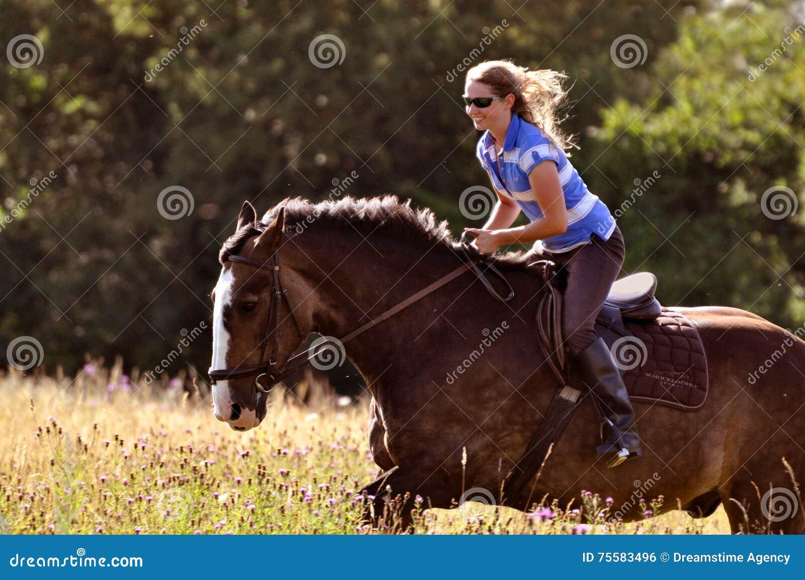 Cheval d équitation de fille dans le pré