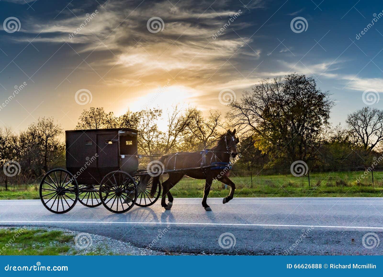 Cheval et chariot sur la route dans l Oklahoma