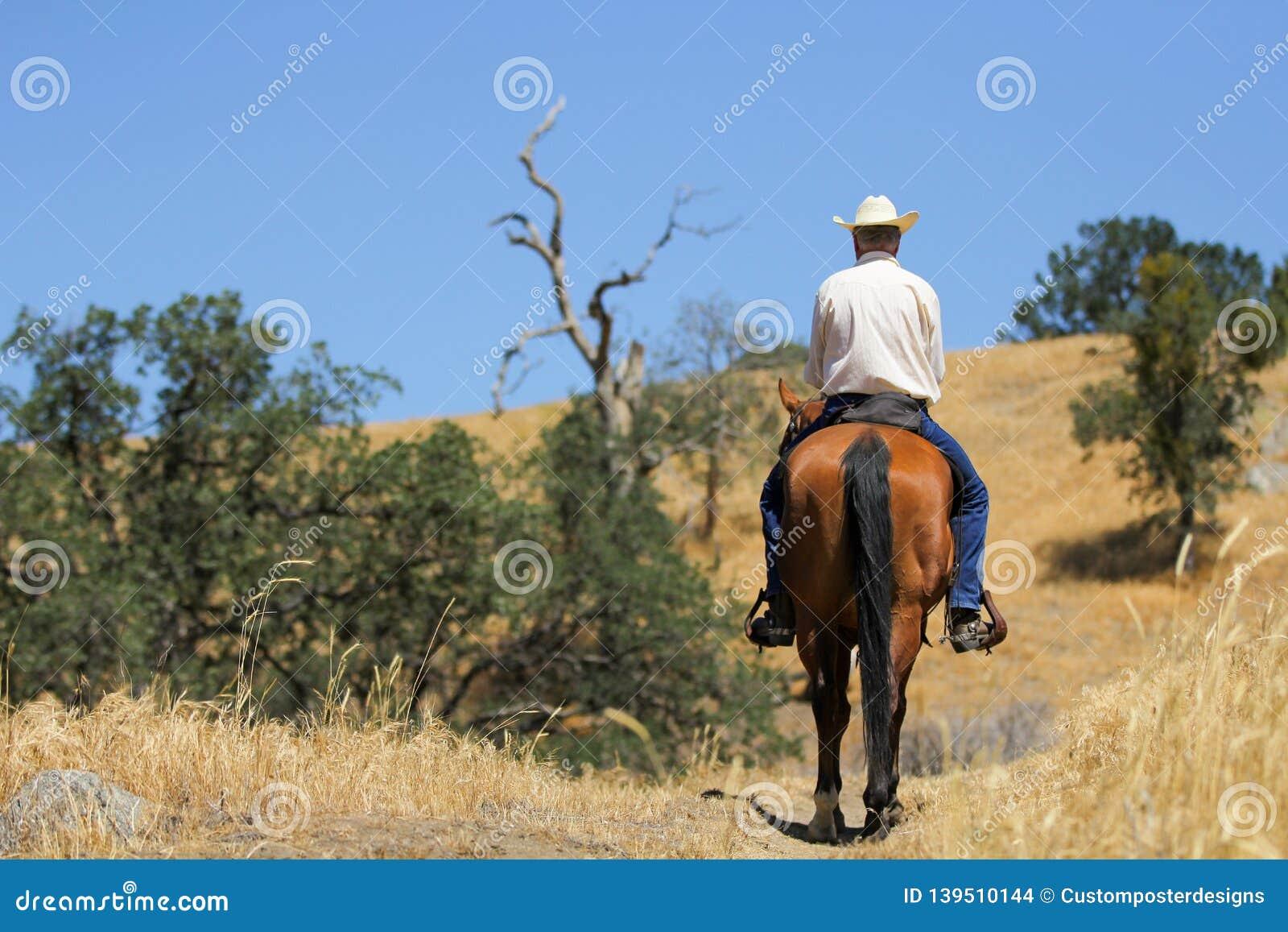 Cheval et cowboy sur une traînée de montagne
