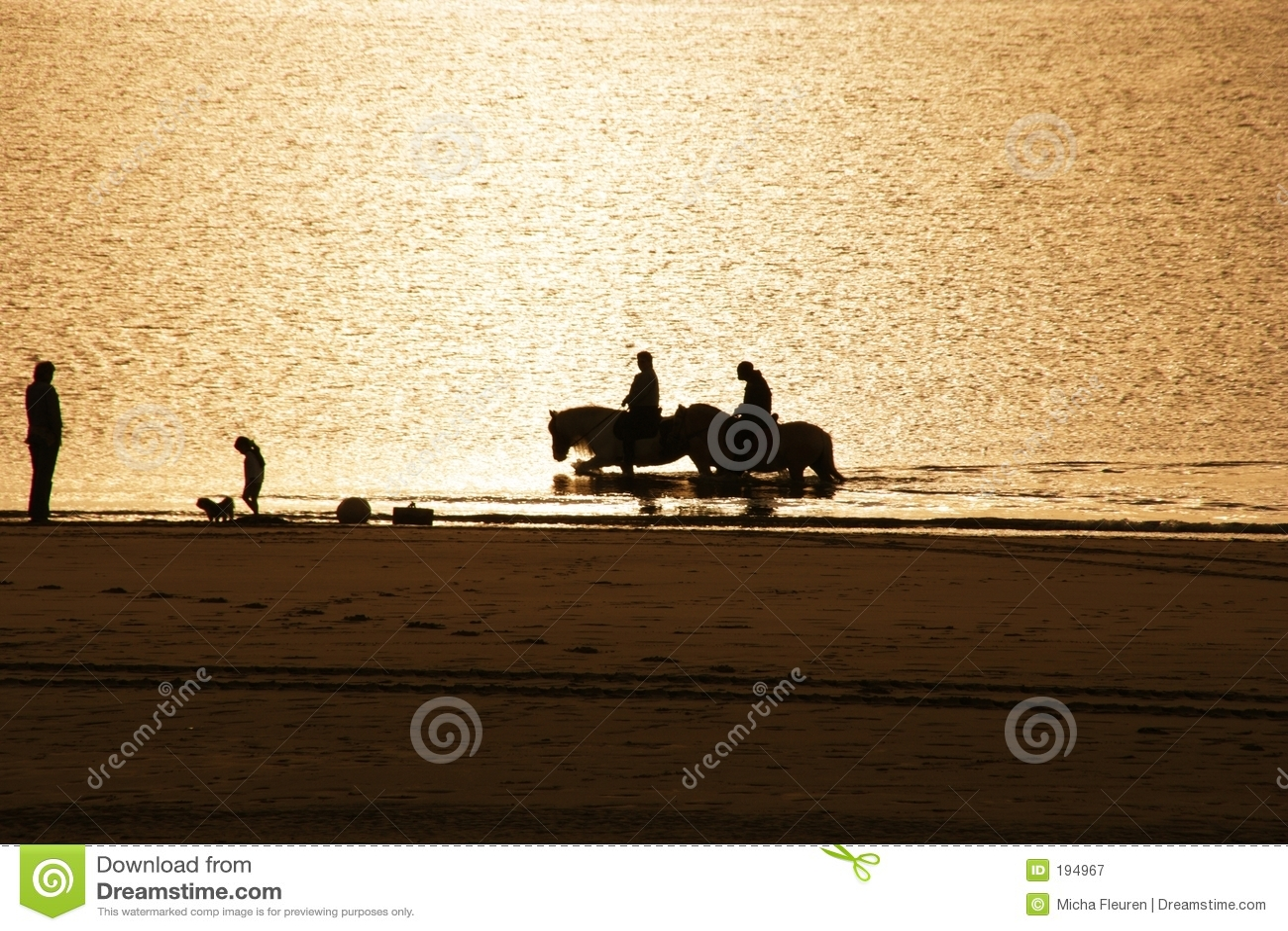 Chevaux sur la plage