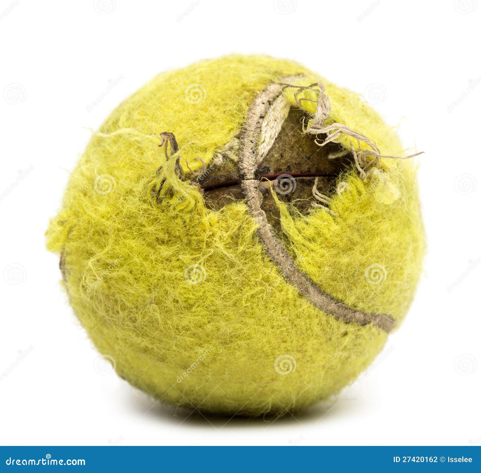 Chewed Tennis Ball Stock Photography Image 27420162