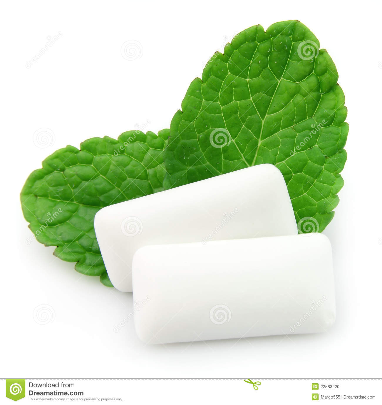 Chewing Gum Menthol Stock Photo Image Of Macro White