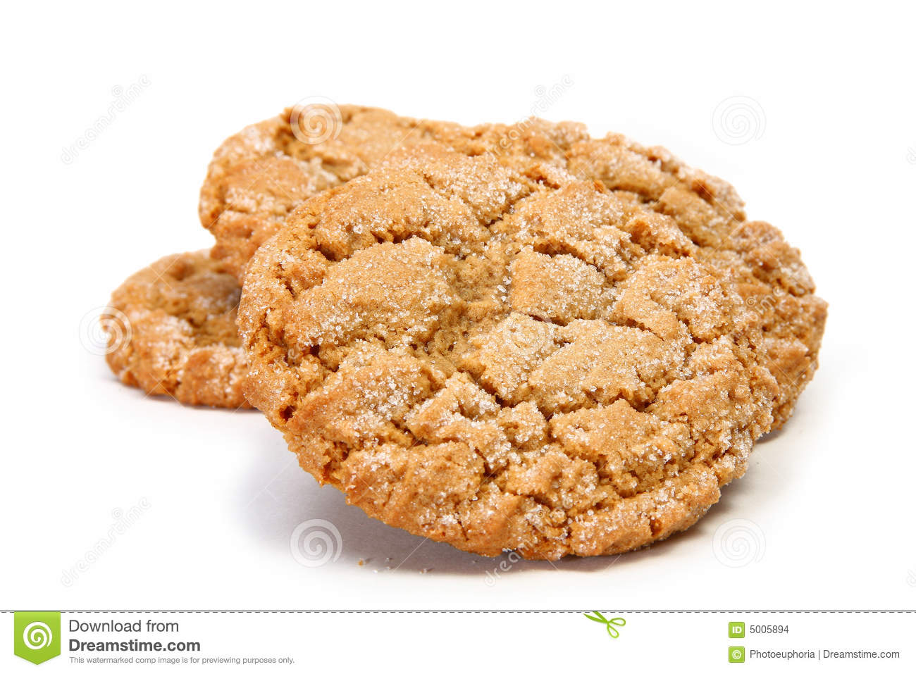 Chewy Ginger Cookie Stock Images - Image: 5005894