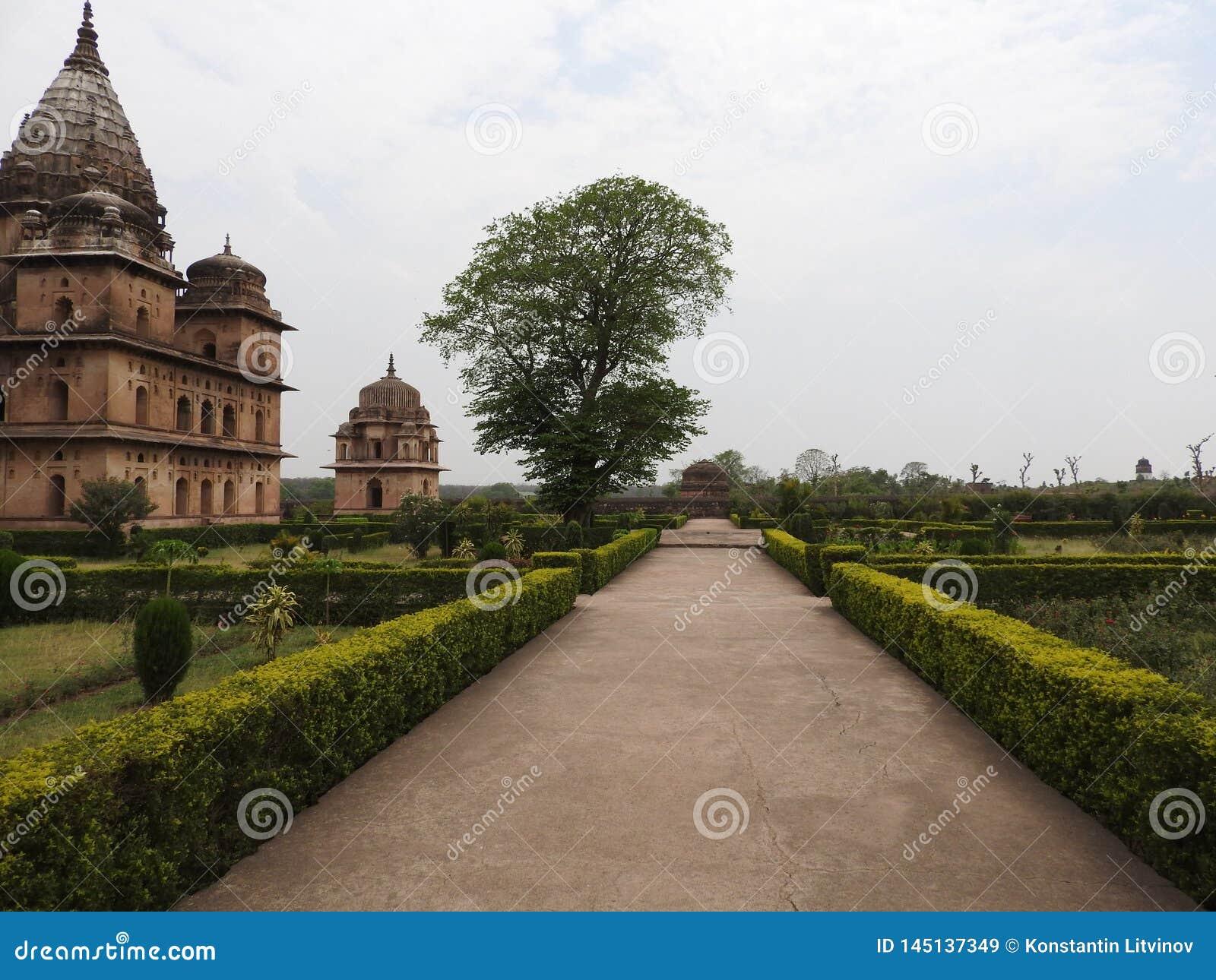 Chhatri, día claro, Orchha, Madhya Pradesh, la India