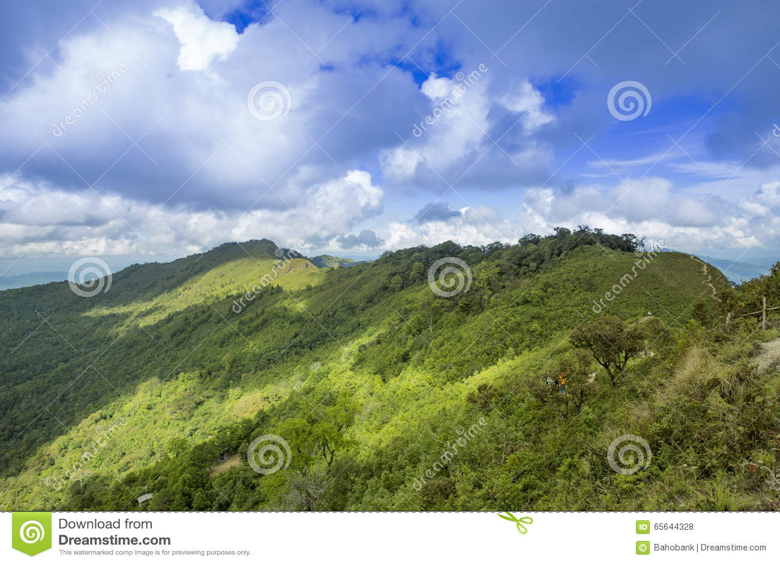 Chi Dao de Phu de voyage au voyage étonnant de la Thaïlande/montagne et du ciel